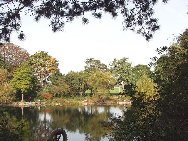 Potomac Pond, Gunnersbury Park
