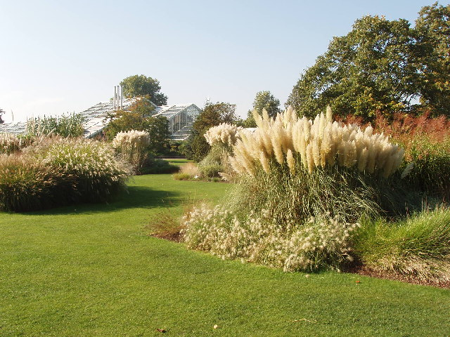 Grass Garden At Kew David Hawgood Cc By Sa 2 0