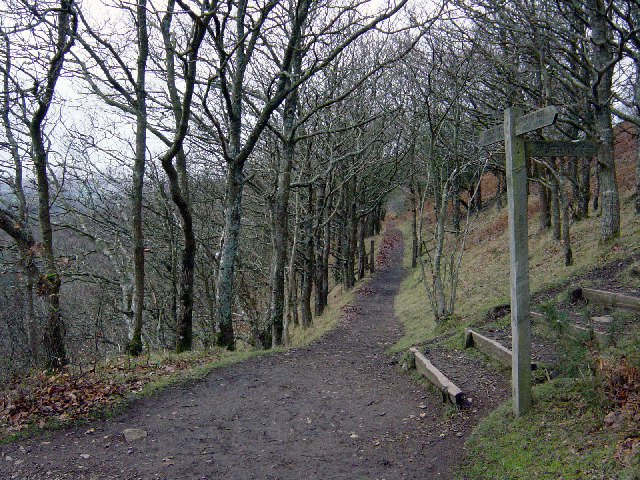 Teign valley footpath near Sharp Tor rock, Castle Drogo