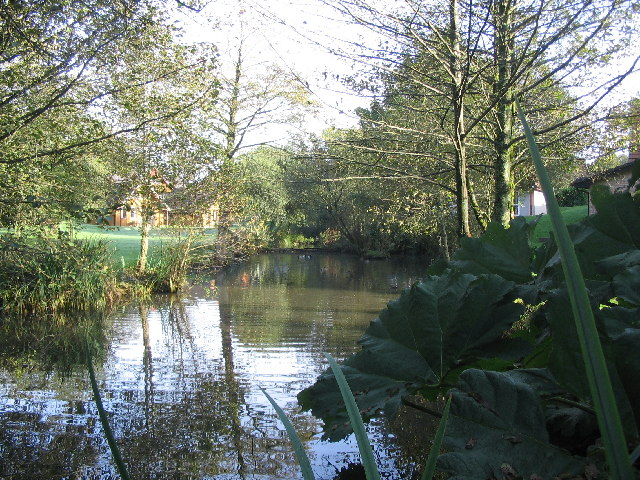 The duckpond at Hengar Manor