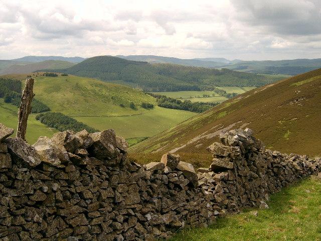 Wall on Kailzie Hill path