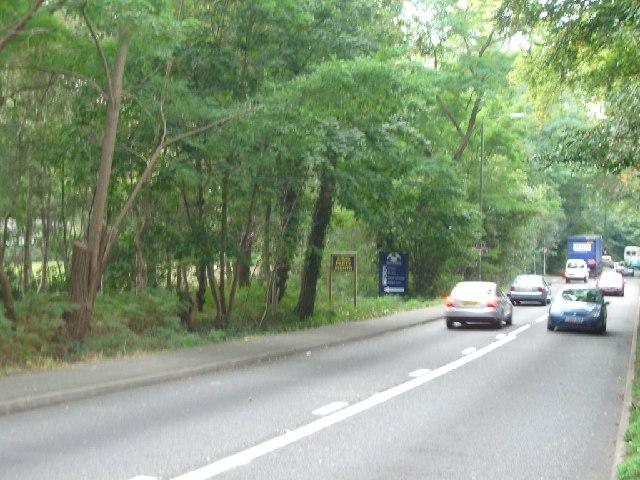 Byfleet Road