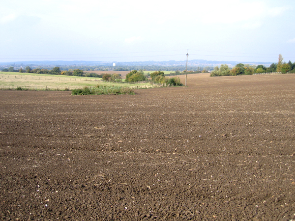 Farmland SW of Pulloxhill, Beds
