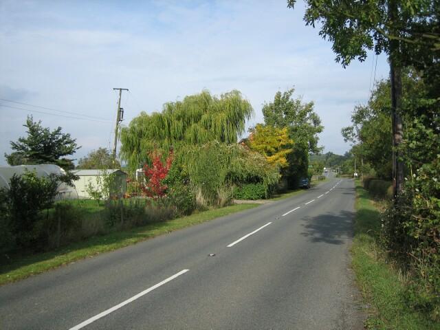 Egdon Lane