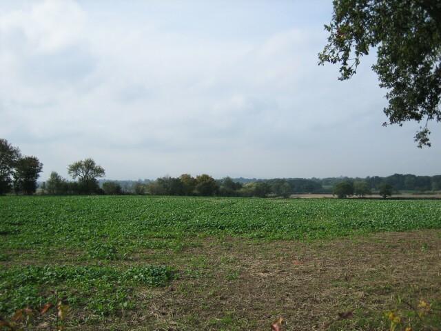 Brickbarns Farm