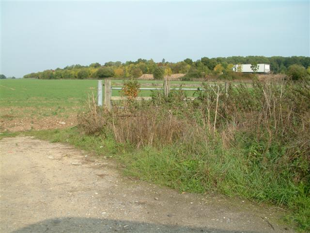 Grazeley Farmland