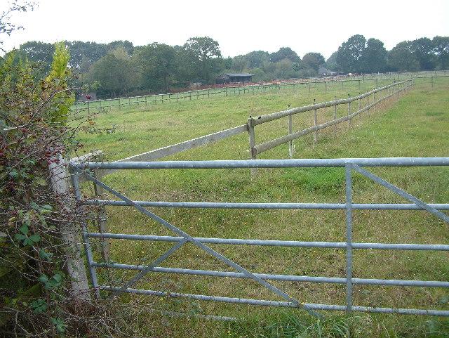 Farmland, Tiptoe