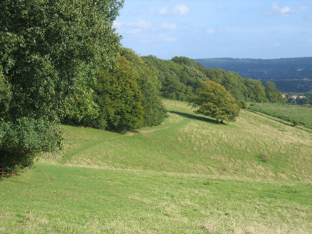 The North Downs Way - a grassy stretch