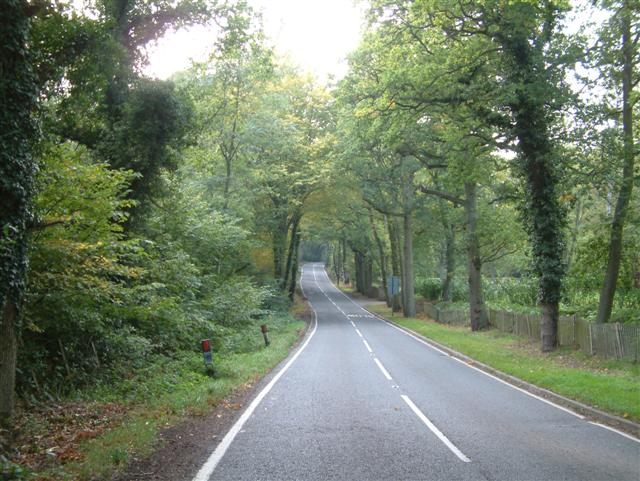 The road from Finchampstead to Eversley