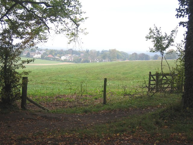Fields south of Bookham