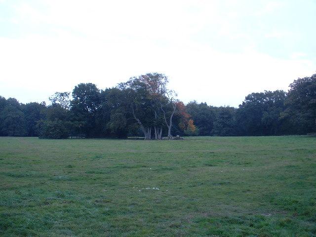Camping Ground near Tweseldown