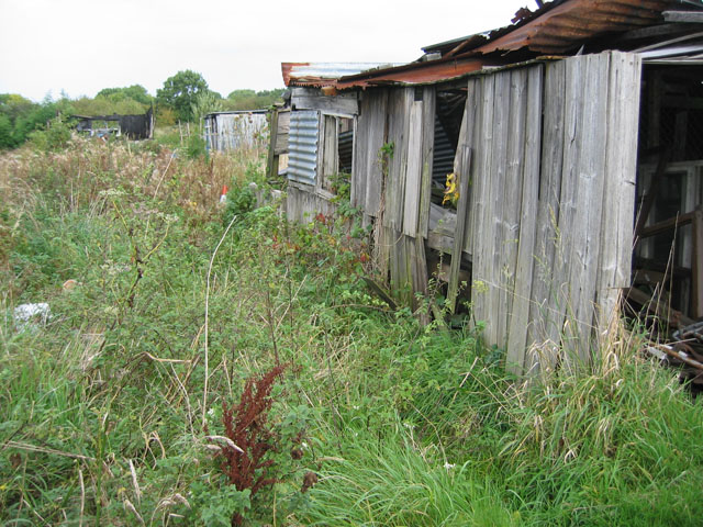 Disused allotment gardens, Melton Mowbray