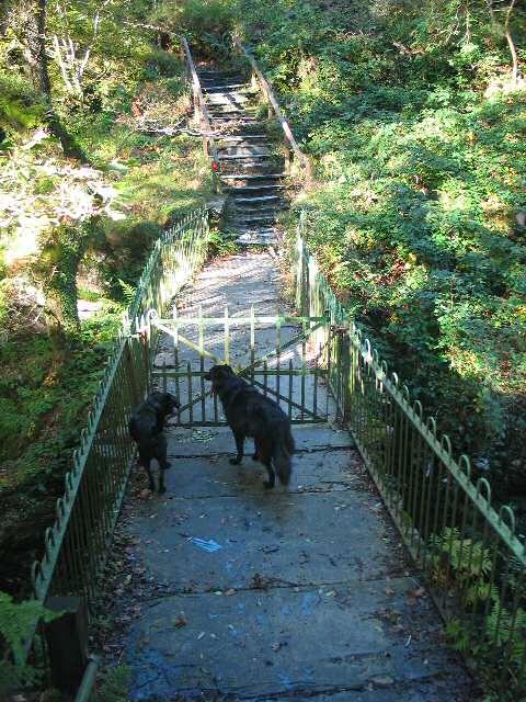 Damaged Bridge over Afon Cynfal