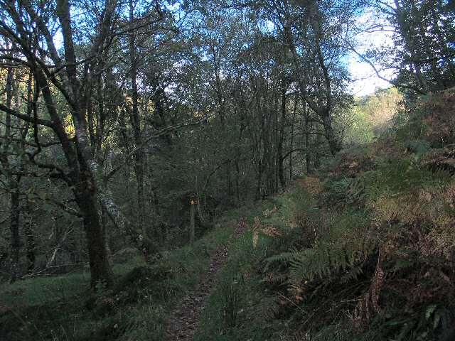Footpath along Ceunant Cynfal
