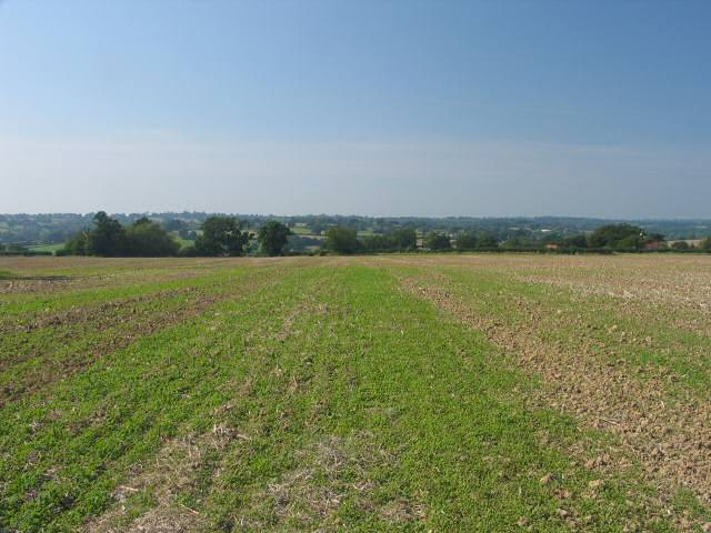 Fields with Rolvenden beyond