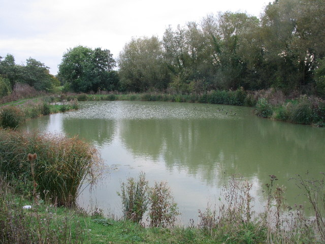 Duck pond near Ford Farm