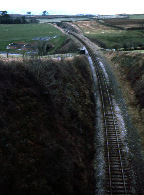 Railway cutting, Bere Alston