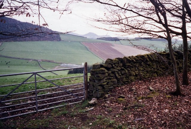 Looking towards Touting Birks Hill from the Southern Upland Way
