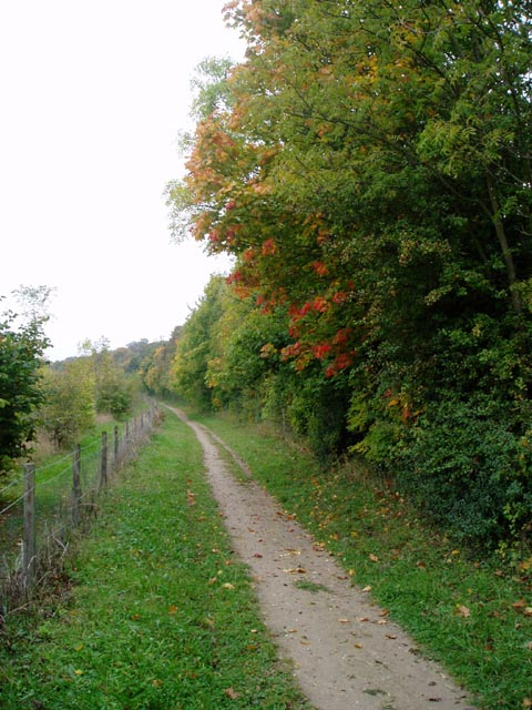 Path along the edge of Magog Down