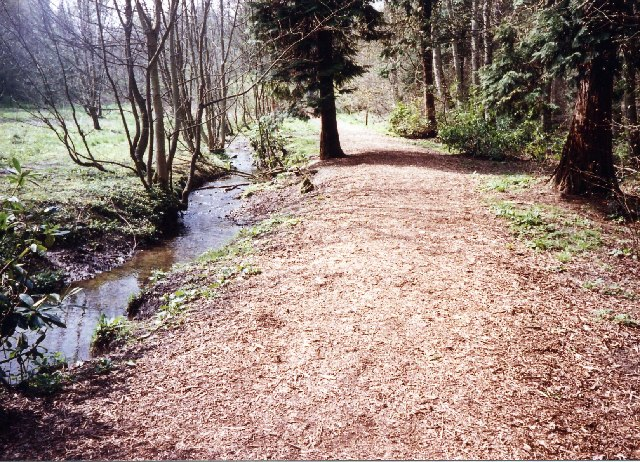 Woods near the secondary school, 300 yards from Galashiels centre