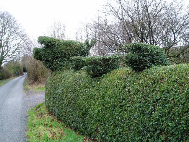 Topiary pigs
