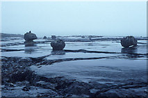M0802 : Erratics at Poll Salach, after rain; The Burren. by Dr Charles Nelson