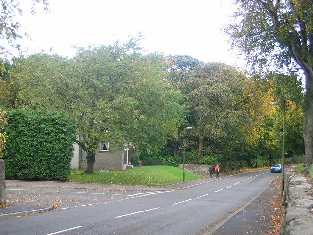 Leafy suburbs.