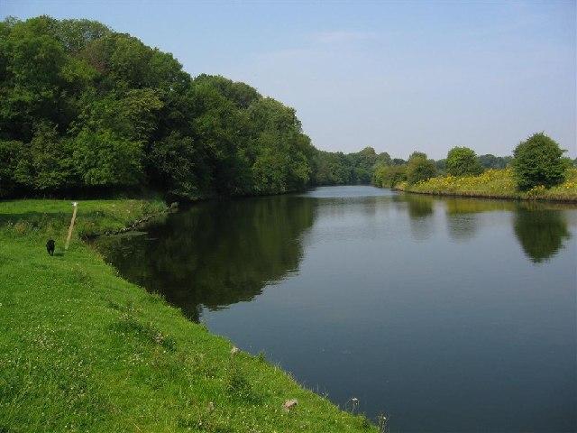 The River Weaver,  near Kingsley.