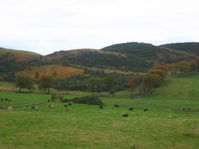 Torphichen Hills.