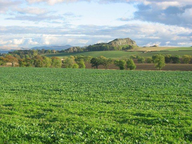 Farmland, Ochiltree.