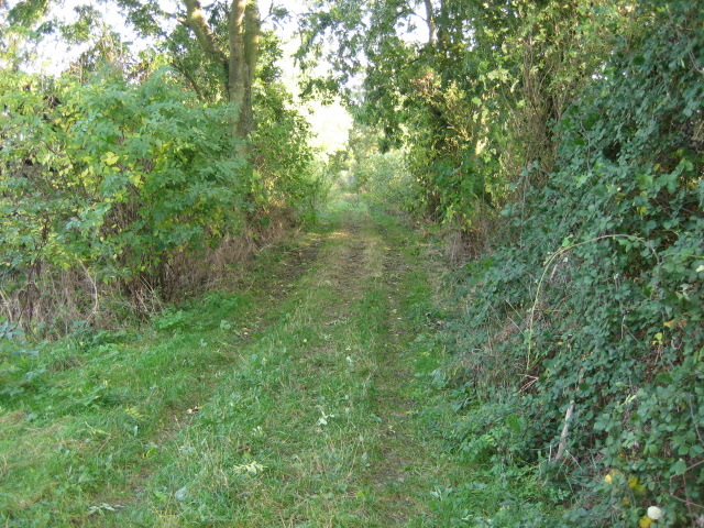 Disused railway looking south-east