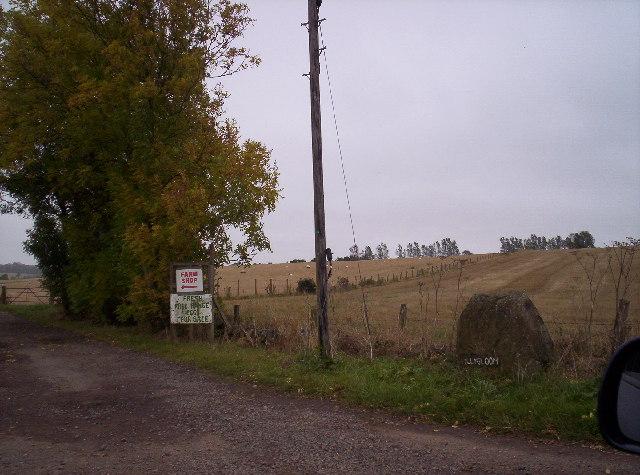 Track to Tillygloom Farmshop