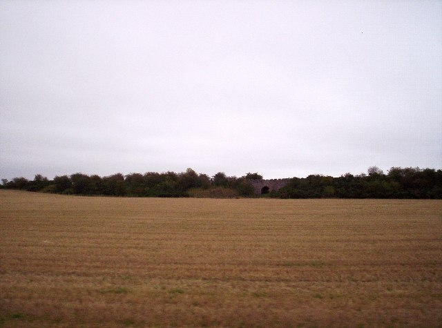 Field with old rail bridge in background