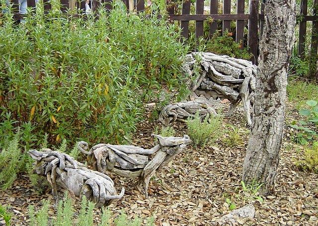 Pigs among the cork oaks
