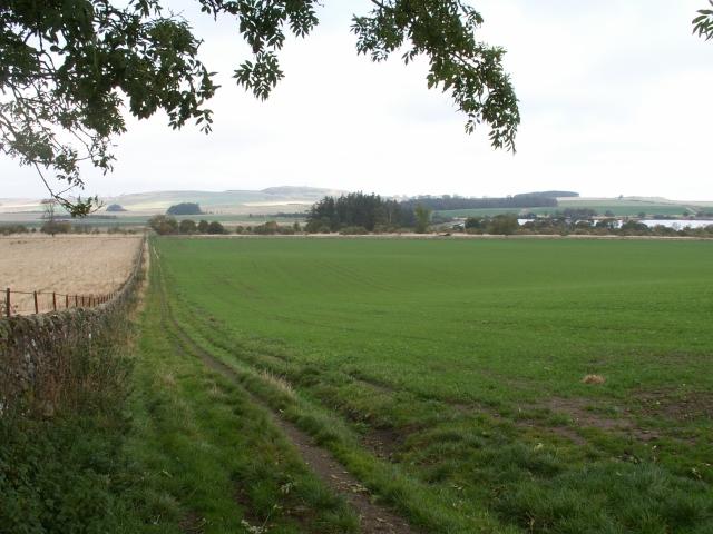 Fields by Cairnhill, Radernie