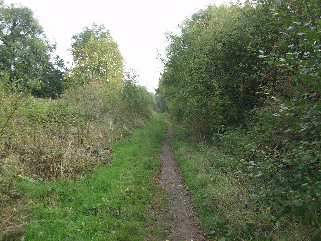Course of the old railway past Marchwiel