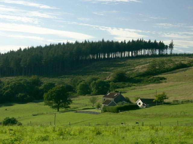 Near Tyning's Farm, looking North West