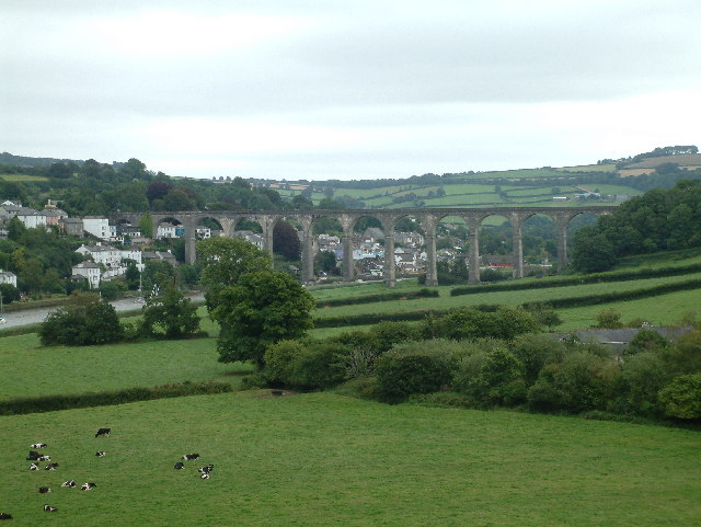 Calstock Viaduct taken from Cotehele House