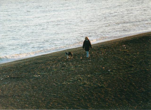 Beach near Bawdsey, Suffolk