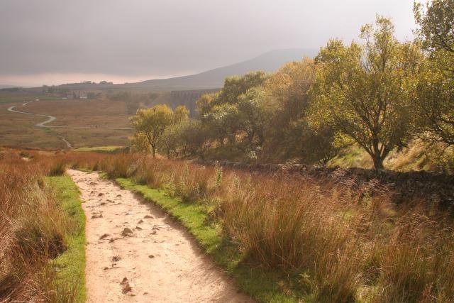 Footpath, Ribblehead