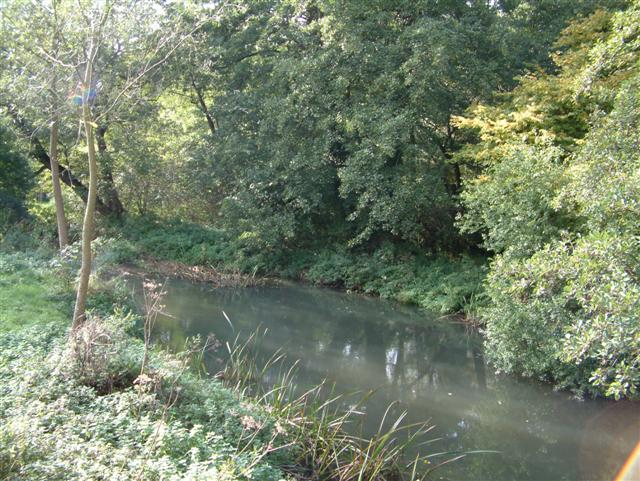 River Loddon, Swallowfield