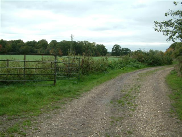 Looking towards Moor Copse