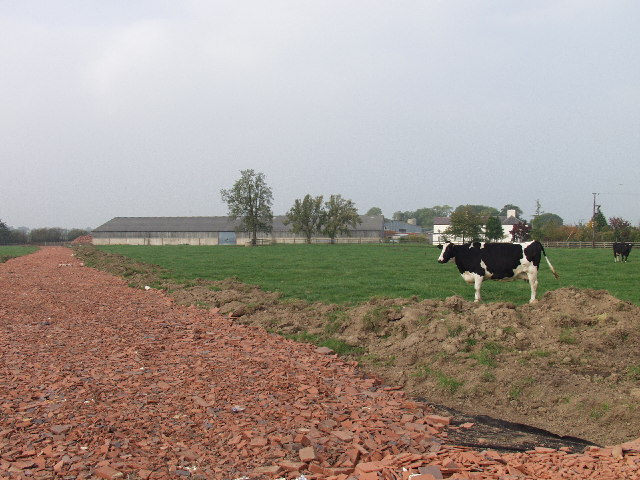 New access road at Cloy Hall Dairy