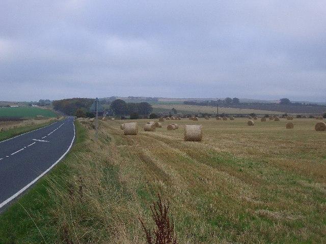 Autumn countryside looking towards Blindburn