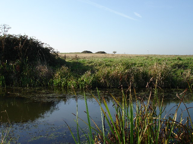 Medieval Village site