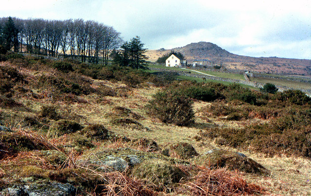 Moorland hillside near the Cheesewring
