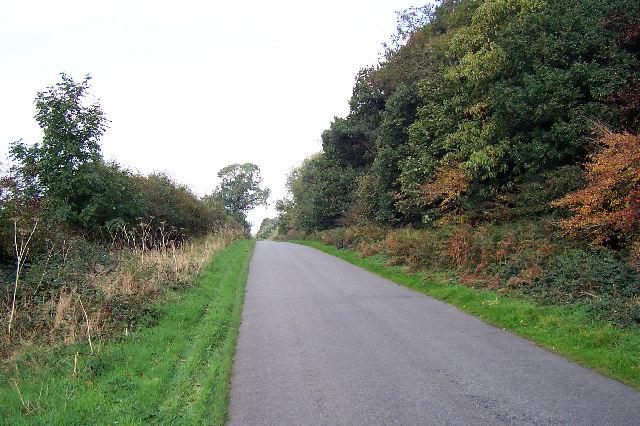 Near Limber Hill