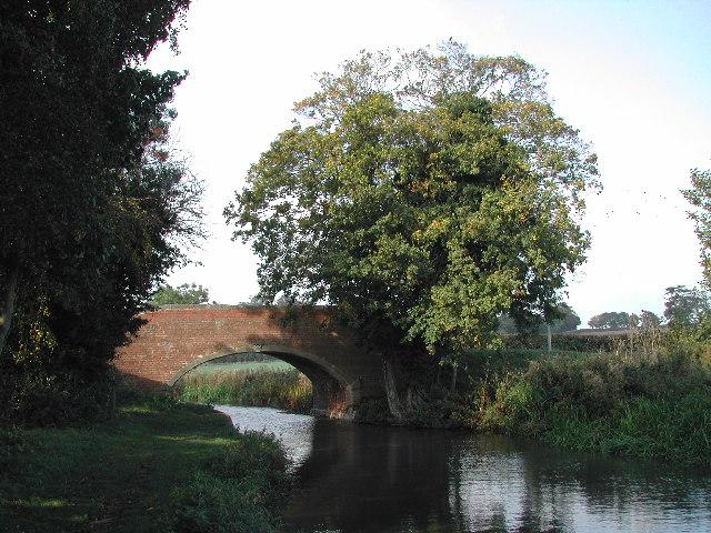 Taylor's Bridge