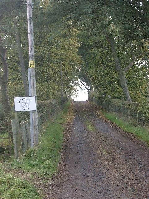 Westpark Farm roadend
