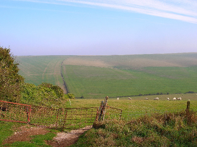 Downland viewed from High Hill